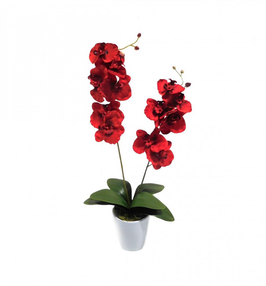Orchidee 2 Rispen Orchideenzweig Phalaenopsis Kunstpflanze Kunst Dekopflanze Topfpflanze Seidenblume Kunstblume Pflanze Blume künstlich unecht Topf Keramik 60 cm rot 1017101-01 getopft F73
