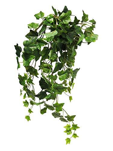 Hängepflanze Efeu Efeubusch Efeuranke Kunstefeu Hängepflanze Pflanzenhänger Kunstpflanze Kunst Pflanze künstlich unecht grün 60 cm 31007-1 F43
