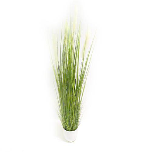 Gras Grasbusch Kunstgras Dekogras Deko Ziergras Kunstpflanze Kunst Pflanze Dekopflanze Topfpflanze Kunstblume Blume künstlich unecht Topf grün 140 cm getopft 57265-3 F28