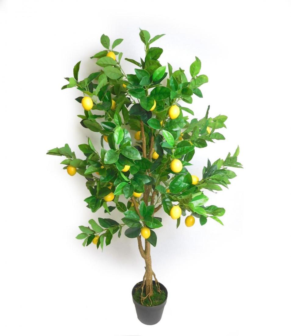 Baum Zitronenbaum Zitronen Kunstpflanze Kunst Pflanze Deko Dekobaum Baum Kunstbaum Dekopflanze Topfpflanze Zimmerpflanze Grünpflanze Blume künstlich unecht Topf grün gelb 130 cm getopft 771162 F64