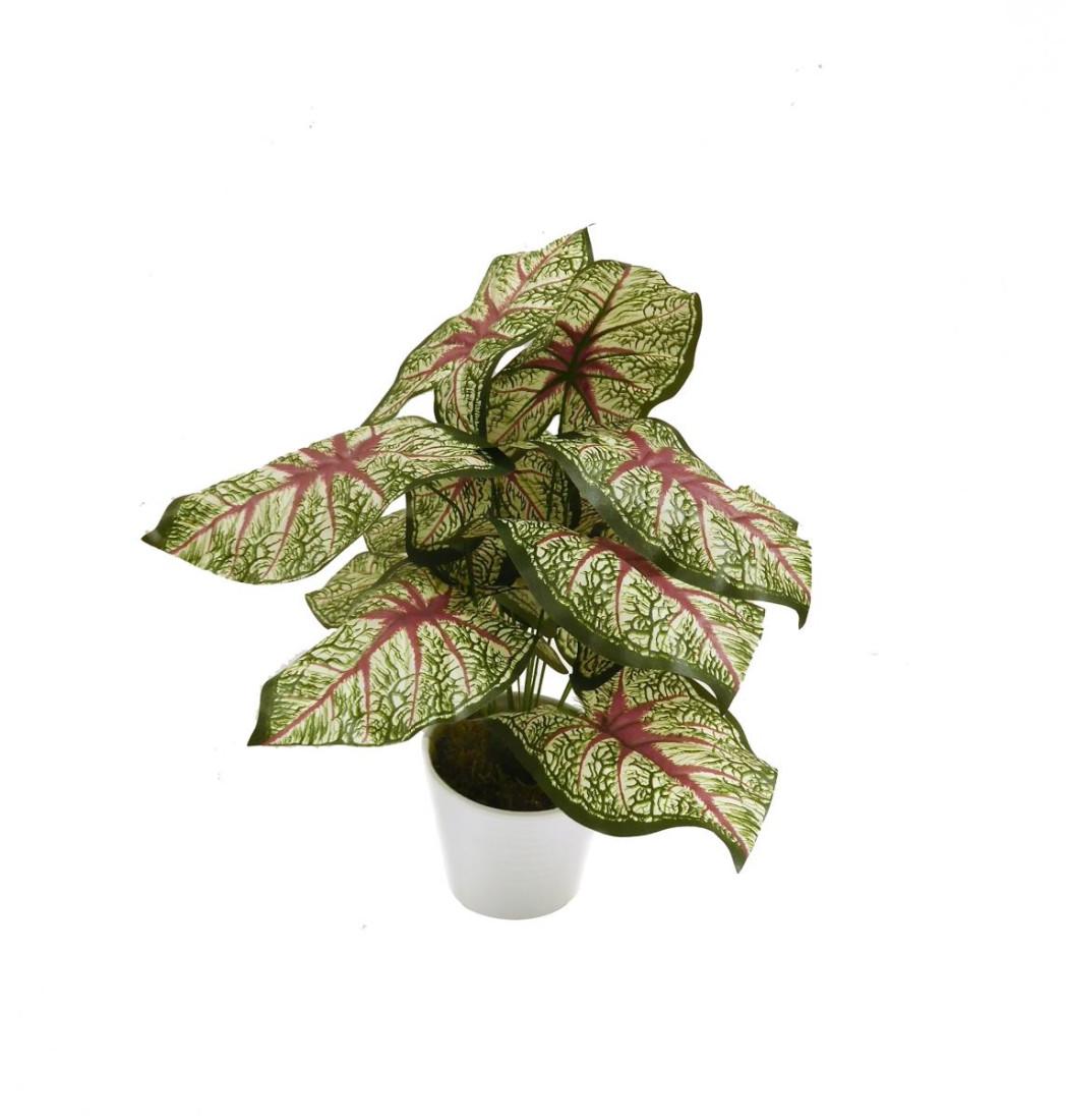 Caladium Blattpflanze Kunstpflanze Kunst Pflanze Deko Dekopflanze Topfpflanze Grünpflanze künstlich unecht Topf 45 cm getopft N-31870-1 F69