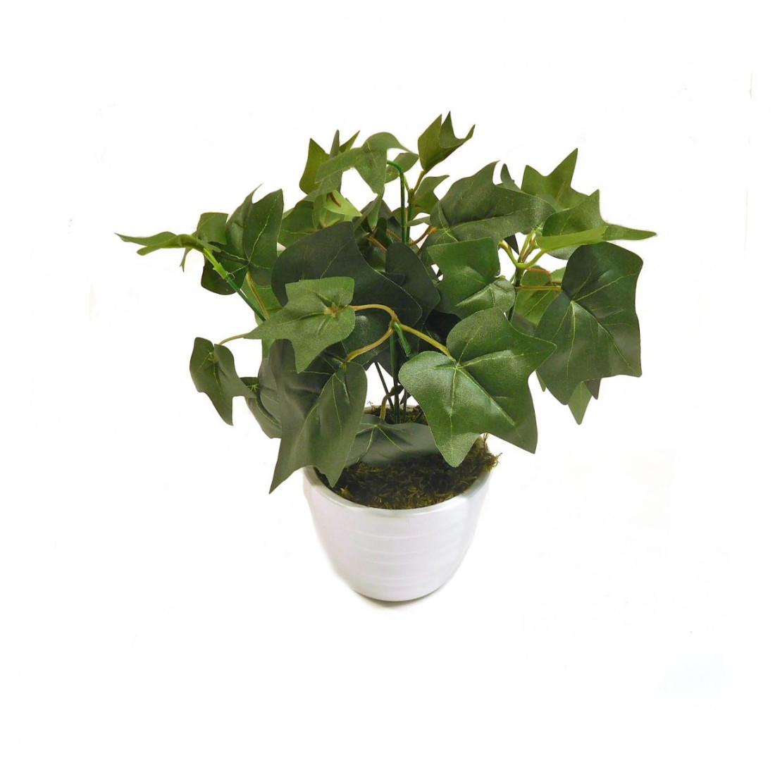 Efeu Kunstefeu Dekoefeu Blattpflanze Kunstpflanze Kunst Pflanze Deko Dekopflanze Topfpflanze Zimmerpflanze Grünpflanze künstlich unecht Topf 30 cm 771915 getopft F57