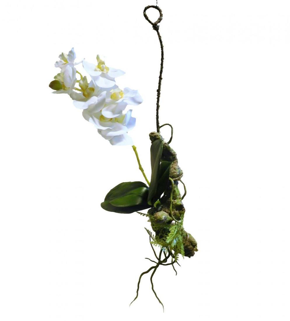 Orchidee Vanda Hänger Hängeorchidee hängend Kunst Kunstblume weiß 60435-05 F59