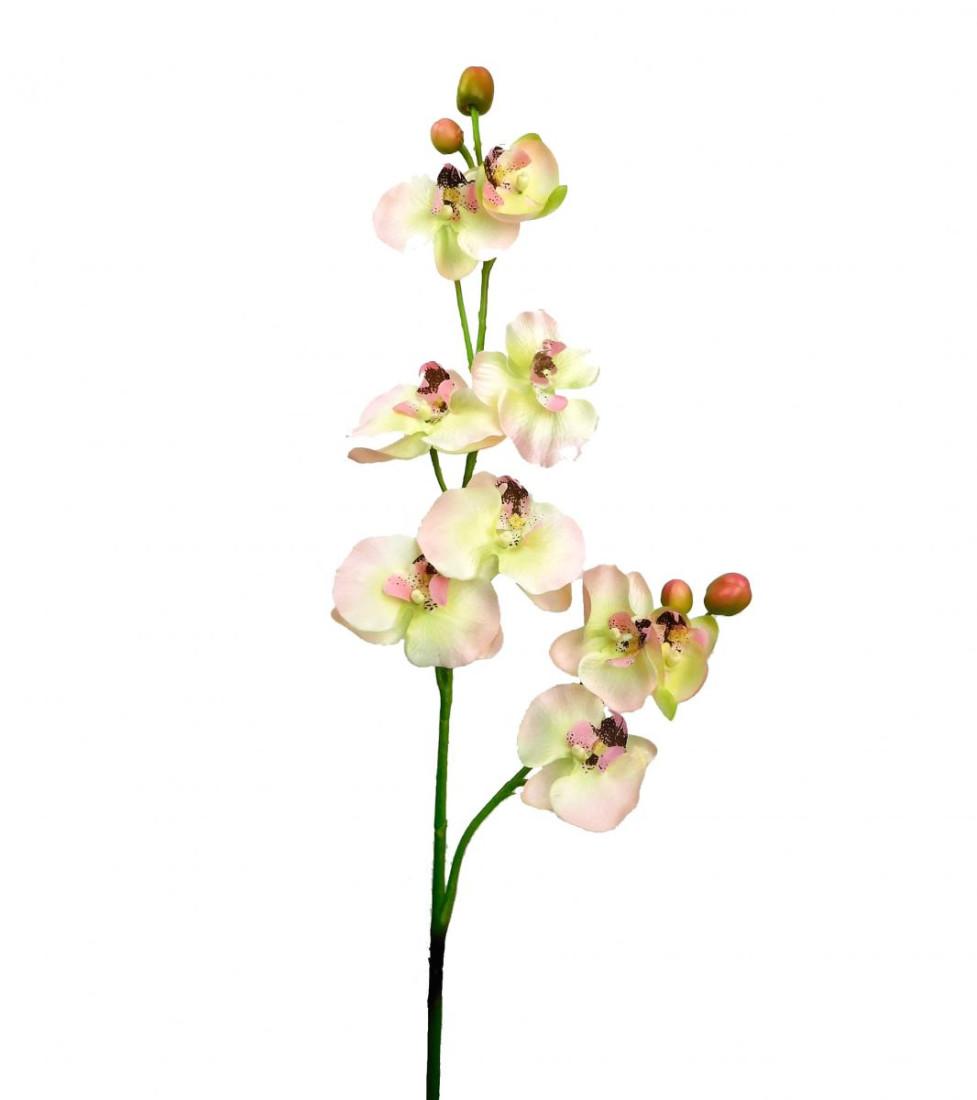 Orchidee Orchideenzweig Kunst Blume Kunstblume creme rosa 84 cm 126536-06 F4