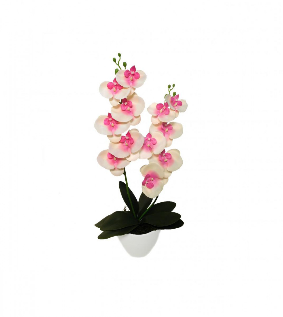 Orchidee 2 Rispen Phalaenopsis Kunst Kunstpflanze Dekopflanze Seidenblume Kunstblume Zimmerpflanze Pflanze Blume künstlich Topf Keramik 60 cm 13053-6 F73 (Creme-rosa)