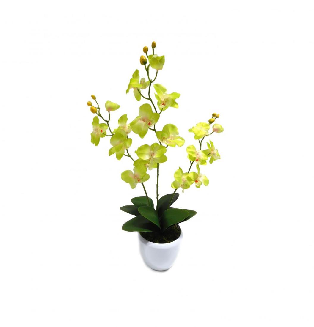 Orchidee 3 Rispen Orchideenzweig Kunstpflanze Kunst Dekopflanze Topfpflanze Seidenblume Kunstblume Zimmerpflanze Pflanze Blume künstlich unecht Topf Keramik 55 cm gelb-grün 60301-01 getopft F73