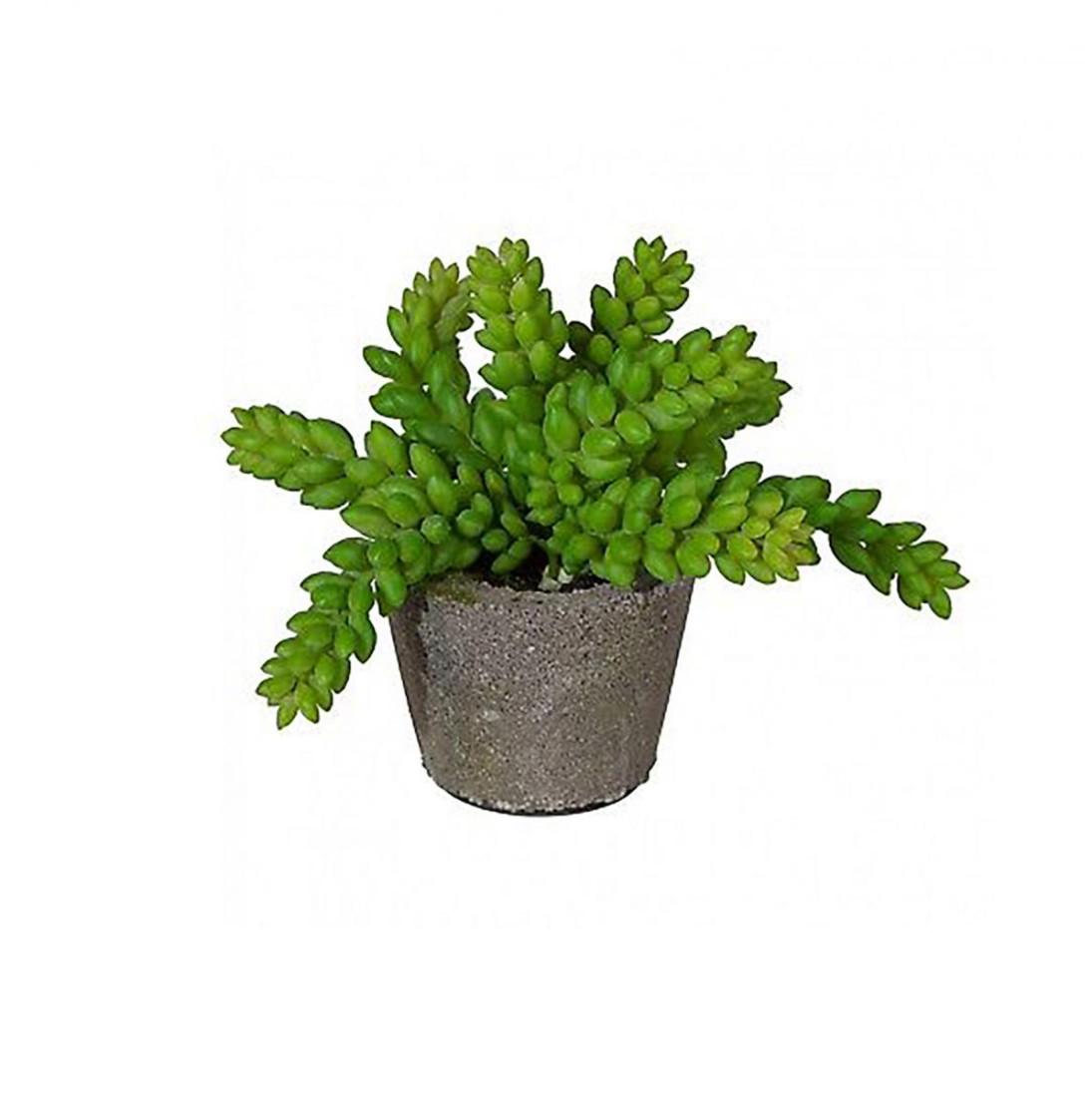 künstliche Sukkulente Grünpflanze Pflanze Kunstpflanze Topf 13 cm 335645-50 F76