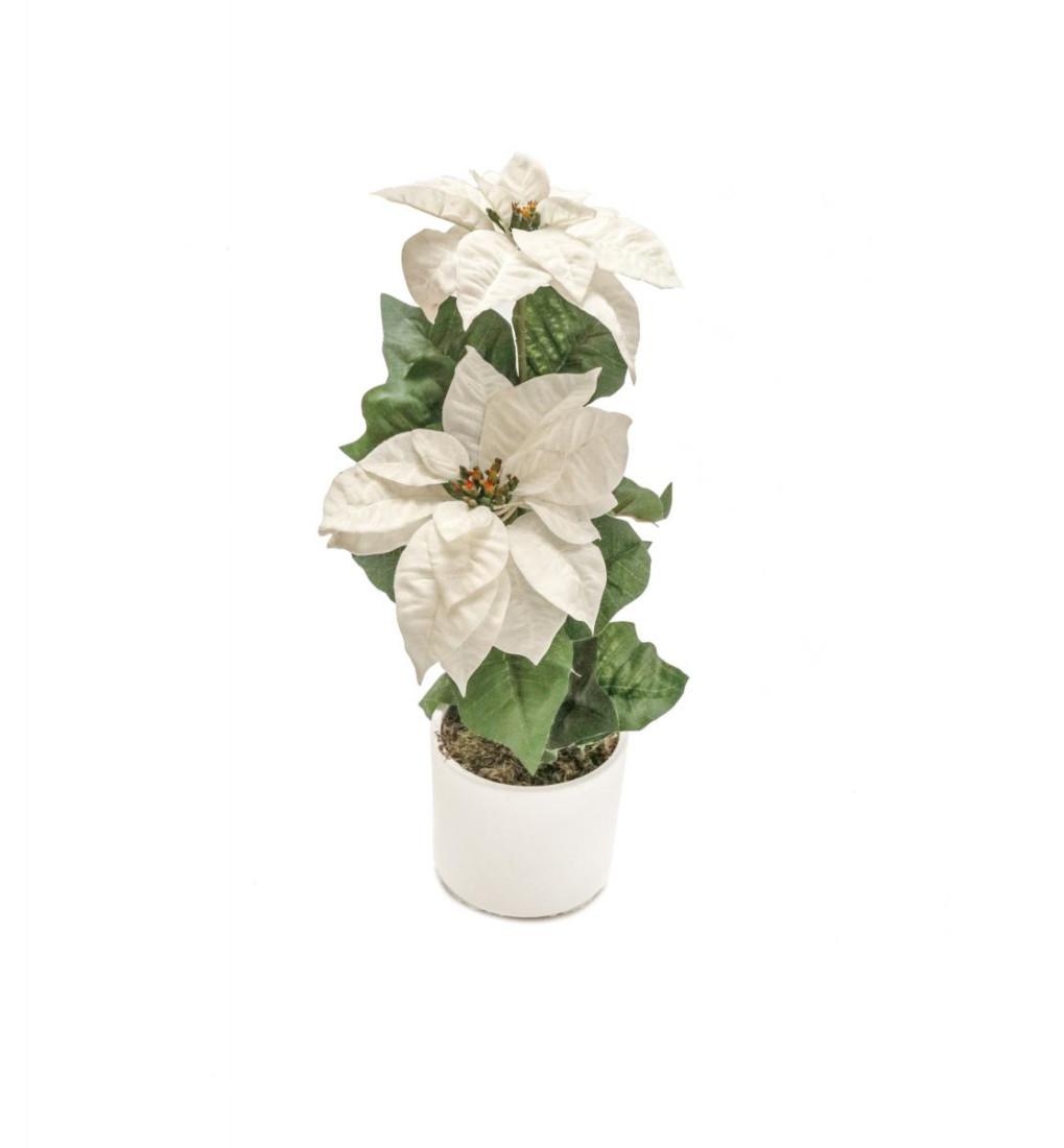 Weihnachtsstern Weiß im Topf Künstlich – 2 Blüten - Kunstblumen Weihnachtsblume Kunstpflanzen Weihnachten Weihnachts Deko Dekoblumen - Weiß 2 Blüten