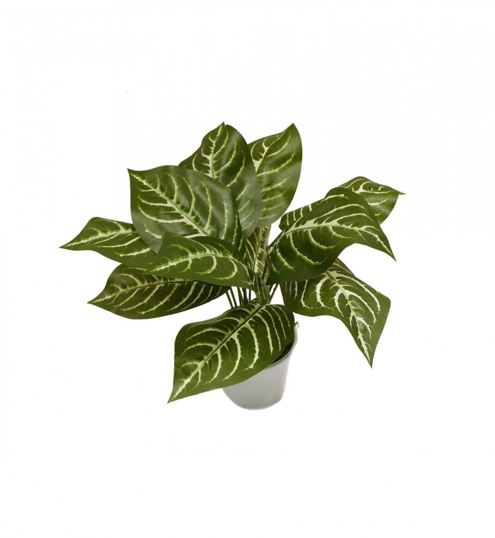 Zebrablatt Blattpflanze Kunstpflanze Kunst Pflanze Deko Dekopflanze Topfpflanze Grünpflanze künstlich unecht Topf 40 cm getopft N-31867-1 F67