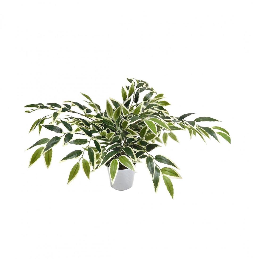 Ficus Benjamini Kunstpflanze Kunst Pflanze Deko Dekopflanze Topfpflanze Zimmerpflanze Grünpflanze künstlich unecht 40 cm grün-weiß N-30246-1 im Topf F71